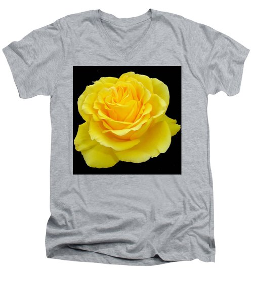Beautiful Yellow Rose Flower On Black Background  Men's V-Neck T-Shirt