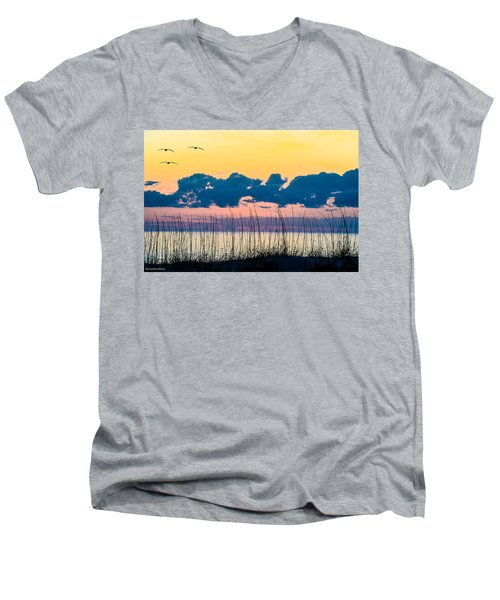 Beauty And The Birds Men's V-Neck T-Shirt