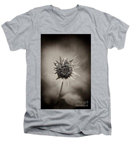 Beauty Of Loneliness Men's V-Neck T-Shirt