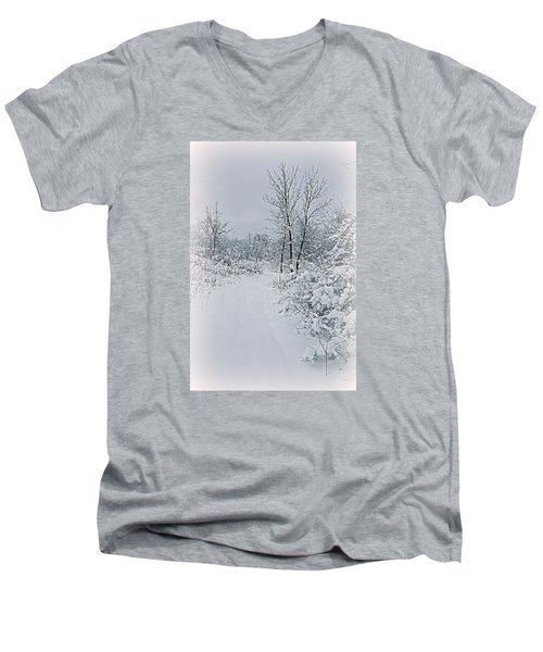 Beauty Of Winter Men's V-Neck T-Shirt by Kay Novy