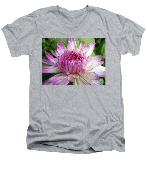 Beauty With Double Identity Men's V-Neck T-Shirt