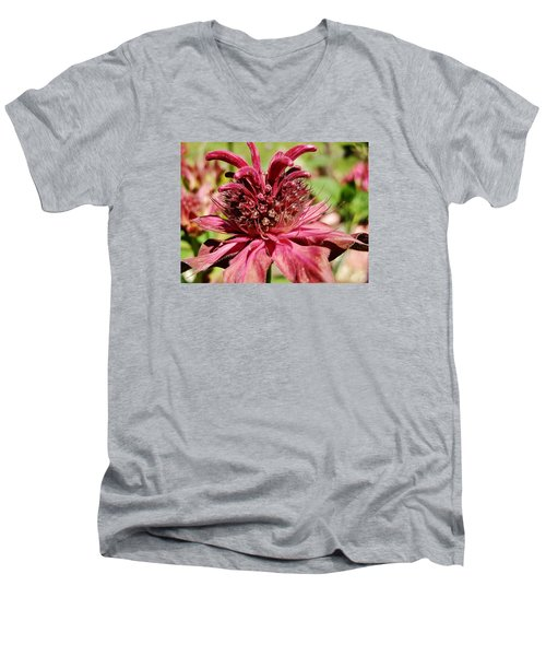 Bee Balm Details Men's V-Neck T-Shirt by VLee Watson