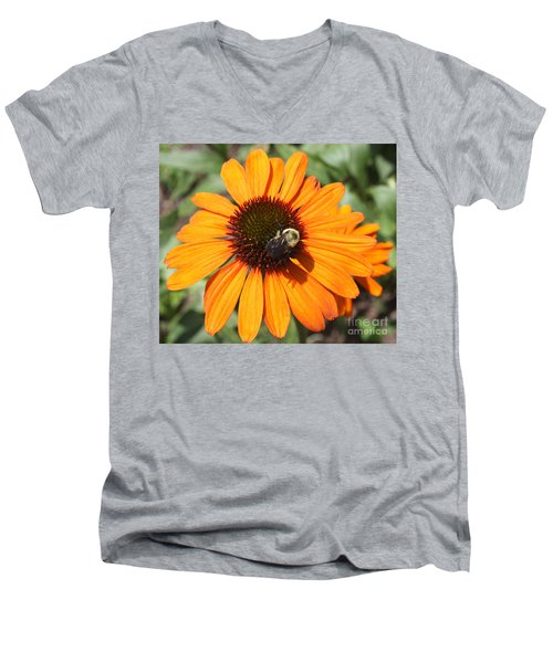 Men's V-Neck T-Shirt featuring the photograph Bee On Flower by John Telfer