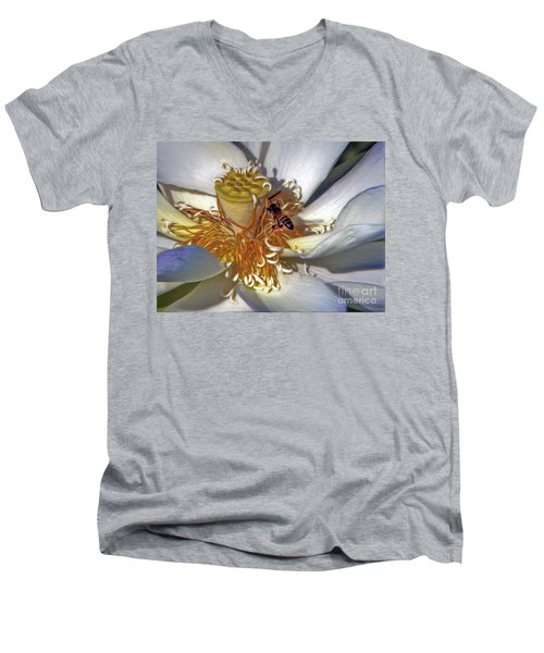 Bee On Lotus Men's V-Neck T-Shirt