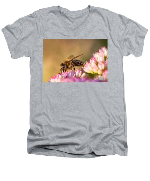 Men's V-Neck T-Shirt featuring the photograph Bee Sitting On Flower by John Wadleigh