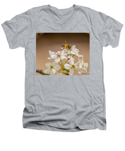 Bee Working The Bradford Pear 4 Men's V-Neck T-Shirt