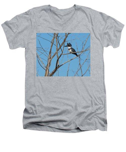 Belted Kingfisher 4 Men's V-Neck T-Shirt