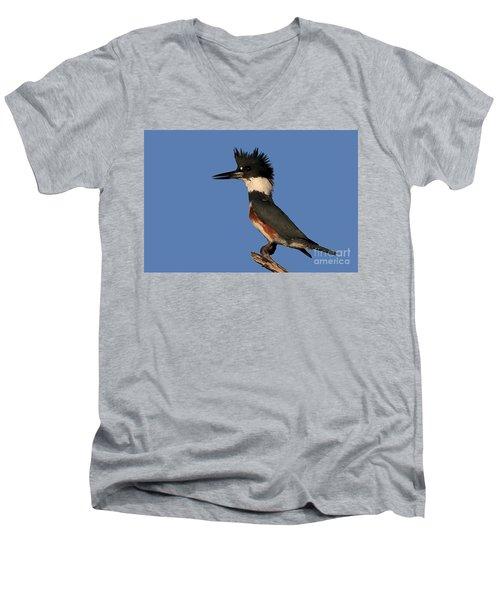 Belted Kingfisher Men's V-Neck T-Shirt