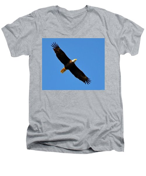Best Bald Eagle On Blue Men's V-Neck T-Shirt