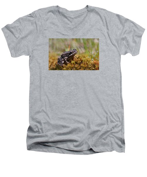 Men's V-Neck T-Shirt featuring the photograph Beutiful Frog On The Moss by Dreamland Media
