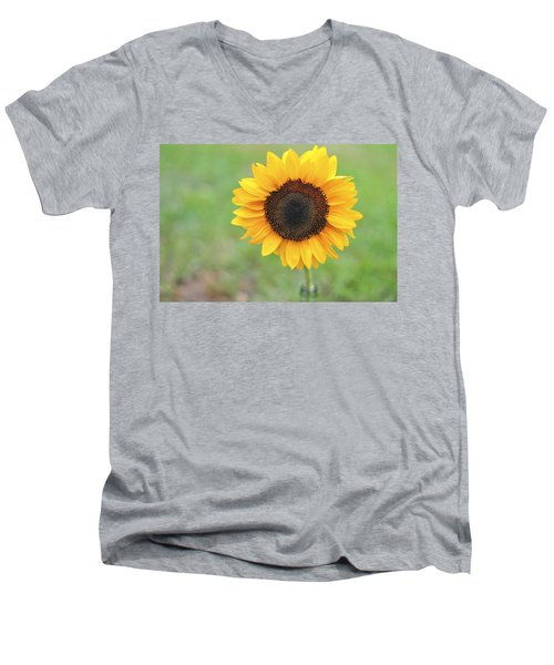 Big Bright Yellow Colorful Sunflower Art Print Men's V-Neck T-Shirt