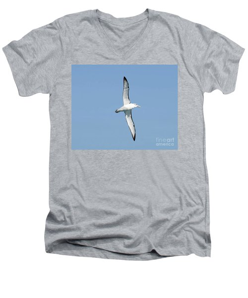Arbornos Flying In New Zealand Men's V-Neck T-Shirt by Loriannah Hespe