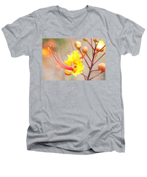 Bird Of Paradise Profile Men's V-Neck T-Shirt