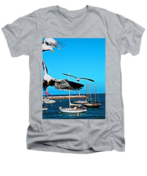 Birds In Paradise Men's V-Neck T-Shirt