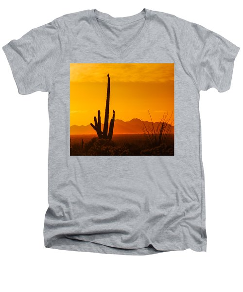 Birds In Silhouette Men's V-Neck T-Shirt
