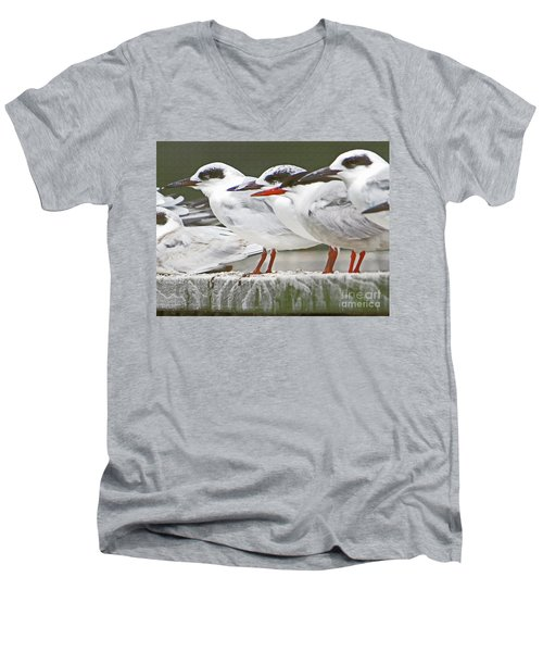 Birds On A Ledge Men's V-Neck T-Shirt