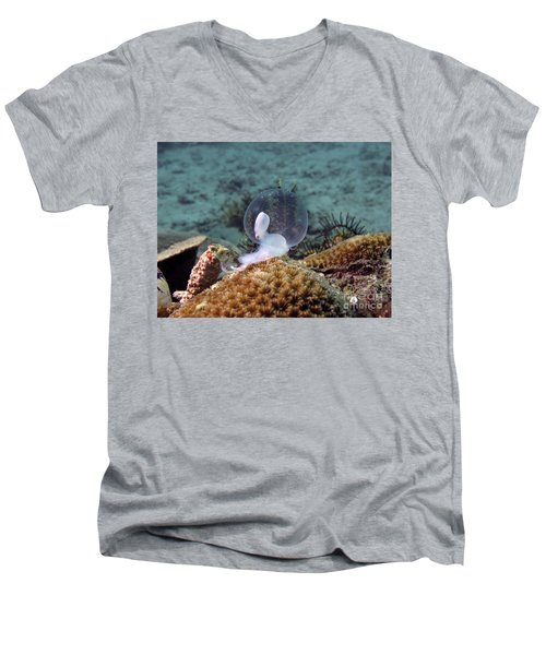 Men's V-Neck T-Shirt featuring the photograph Birth Of Marine Cuttlefish by Sergey Lukashin