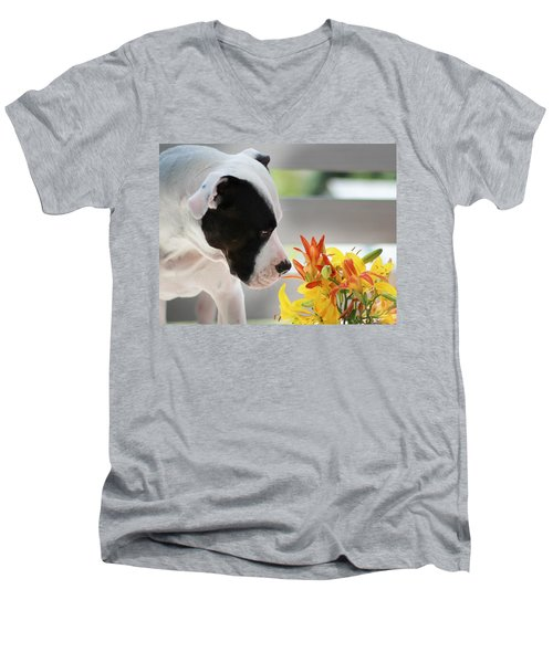 Birthday Bouquet Men's V-Neck T-Shirt