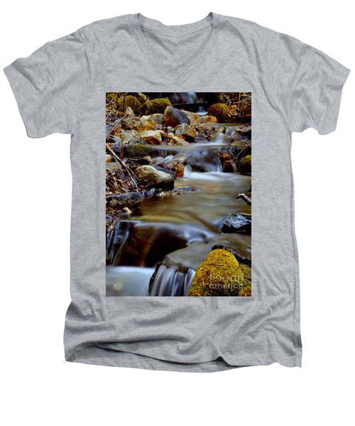 Bisbee Creek Men's V-Neck T-Shirt