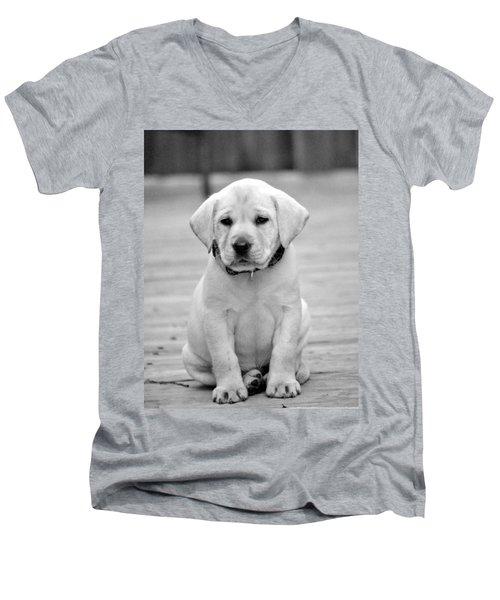 Black And White Puppy Men's V-Neck T-Shirt