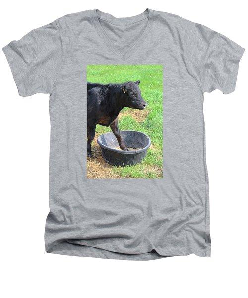 Black Angus Calf Men's V-Neck T-Shirt