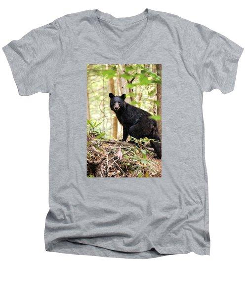Black Bear Smile Men's V-Neck T-Shirt