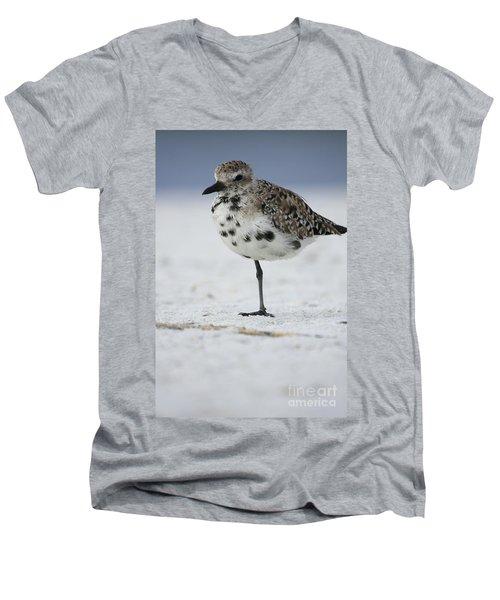 Black-bellied Plover Men's V-Neck T-Shirt