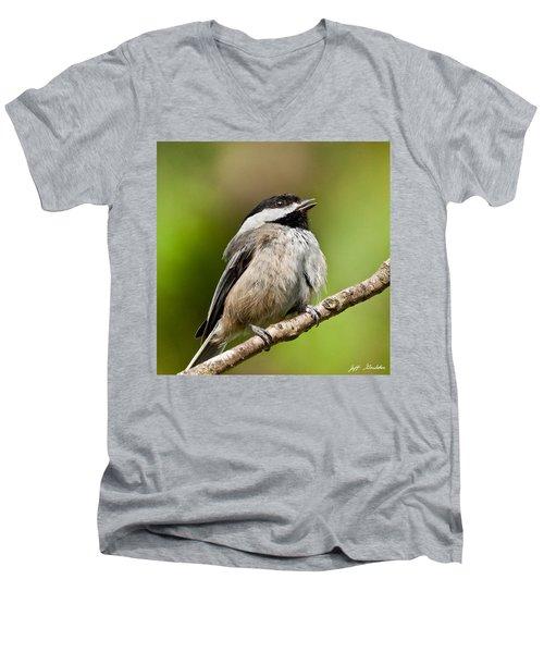 Black Capped Chickadee Singing Men's V-Neck T-Shirt