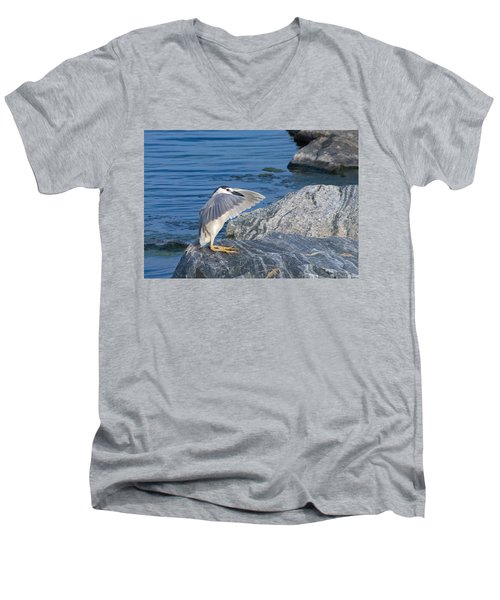 Black Crowned Night Heron Men's V-Neck T-Shirt