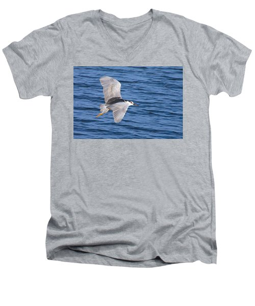 Black Crowned Night Heron In Flight Men's V-Neck T-Shirt