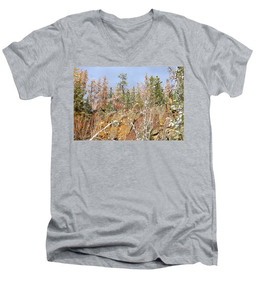 Black Hills Color Palette Men's V-Neck T-Shirt by Clarice  Lakota
