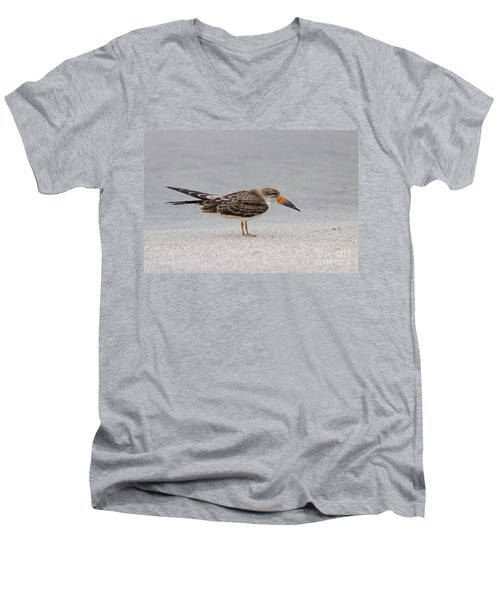 Black Skimmer Men's V-Neck T-Shirt
