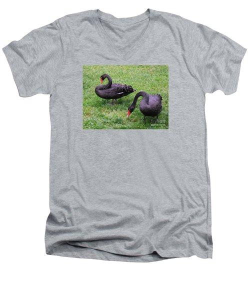 Black Swans Men's V-Neck T-Shirt