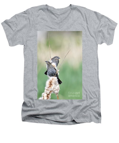 Blackbird Pair Men's V-Neck T-Shirt