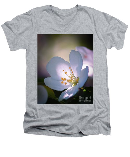 Blossom In The Sun Men's V-Neck T-Shirt by David Perry Lawrence