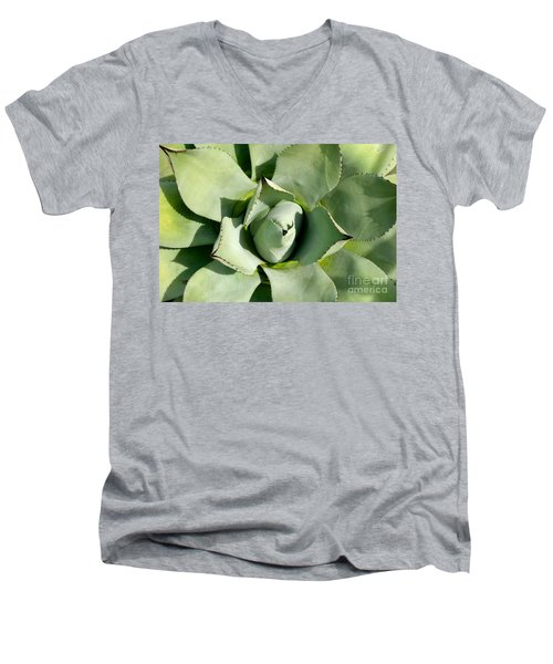 Blue Agave Men's V-Neck T-Shirt