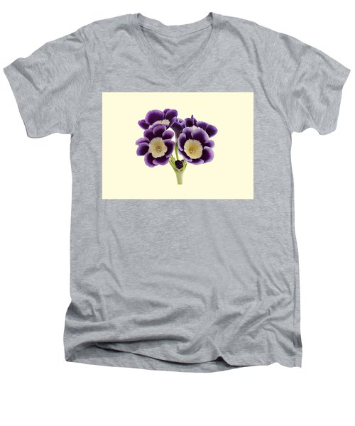 Blue Auricula On A Cream Background Men's V-Neck T-Shirt by Paul Gulliver