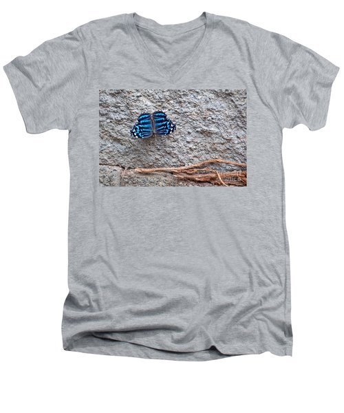 Blue Butterfly Myscelia Ethusa Art Prints Men's V-Neck T-Shirt by Valerie Garner