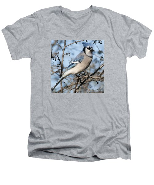Blue Jay.. Men's V-Neck T-Shirt