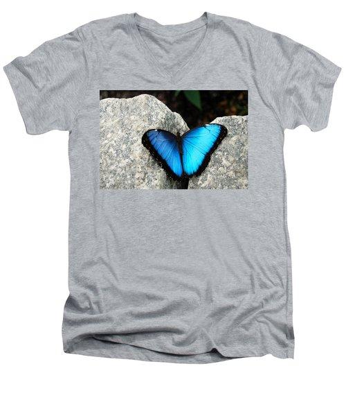 Blue Morpho Butterfly Men's V-Neck T-Shirt