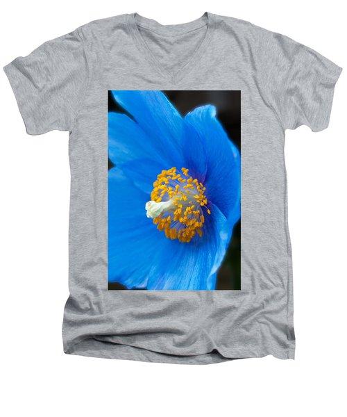 Blue Poppy Men's V-Neck T-Shirt by Michael Porchik