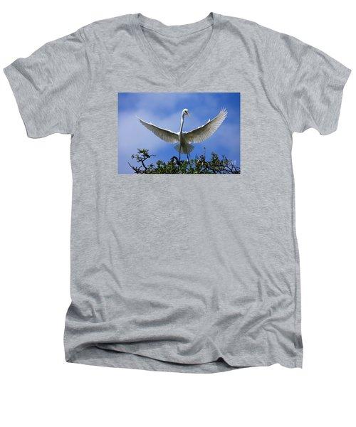 Blue Sky Landing Men's V-Neck T-Shirt
