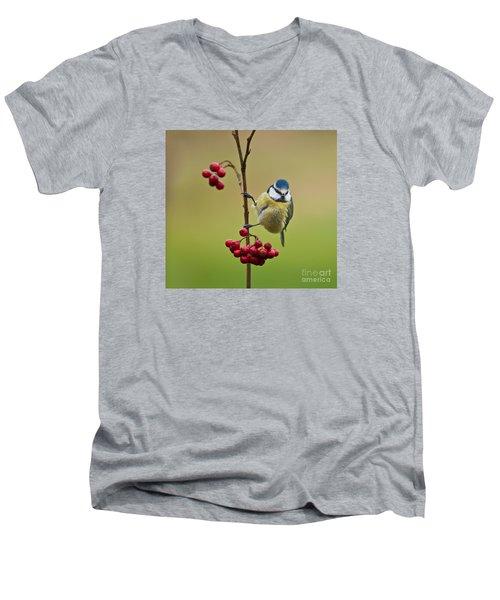 Blue Tit With Hawthorn Berries Men's V-Neck T-Shirt by Liz Leyden