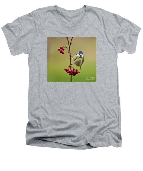 Blue Tit With Hawthorn Berries Men's V-Neck T-Shirt