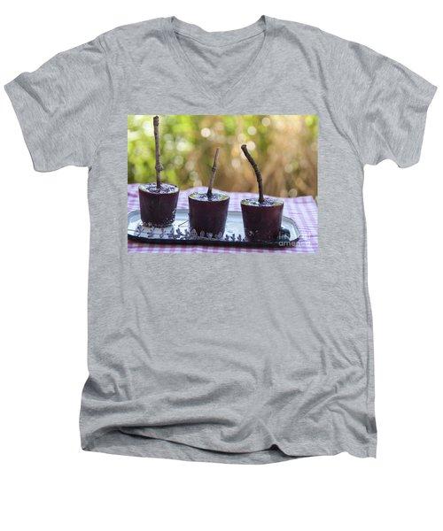 Blueberry Ice Pops Men's V-Neck T-Shirt by Juli Scalzi