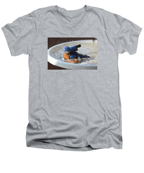 Bluebird Bath Men's V-Neck T-Shirt