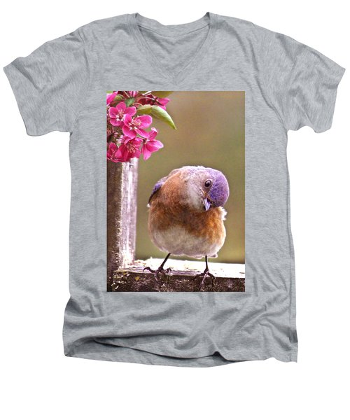 Bluebird Men's V-Neck T-Shirt