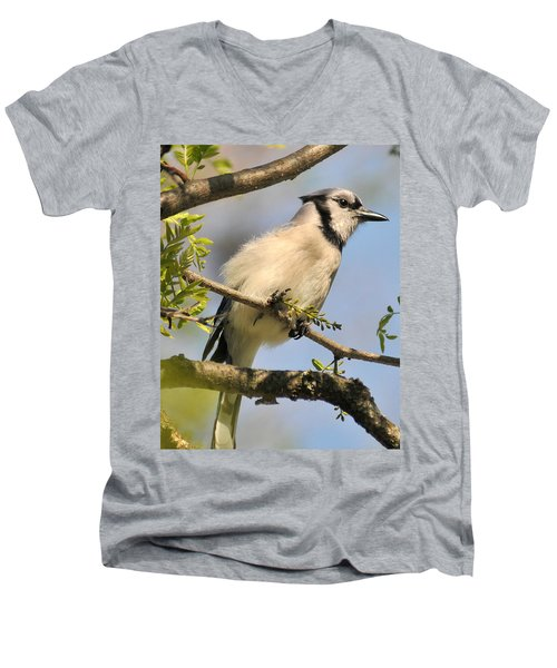 Bluejay 310 Men's V-Neck T-Shirt