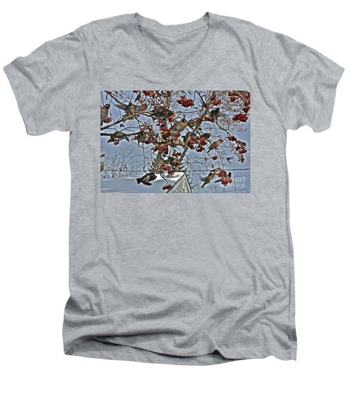 Bohemian Waxwing Feast Men's V-Neck T-Shirt by Linda Bianic