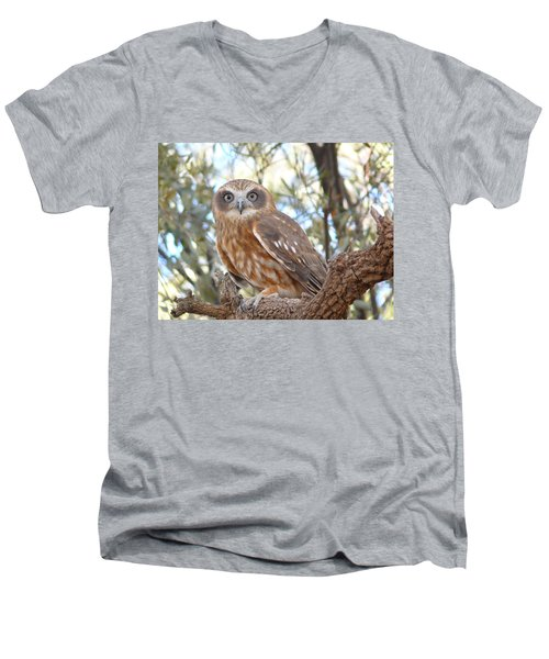 Boobook Owl Men's V-Neck T-Shirt